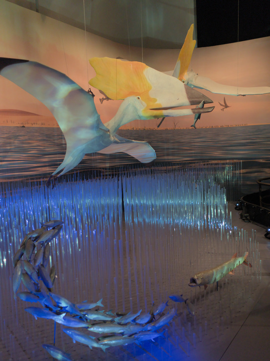 Pterosaurs lived on marine habitats, ocuppying ecological niches similiar to our contemporary seabirds.